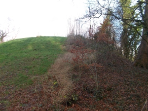 The Penwortham motte- a mound of two halves- half grass, half trees