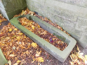 Medieval Coffin