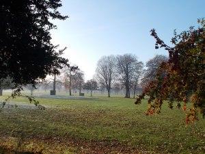 Platt Fields